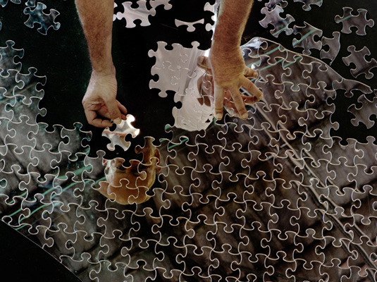 Mircea Cantor, One Piece, the Same, puzzle